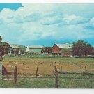 Amish Pennsylvania Dutch Farm Hay Fields Vintage Postcard Lancaster County