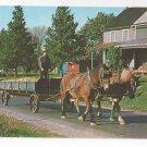 Amish Pennsylvania Dutch Man Horse Drawn Wagon w Corn Vintage Postcard