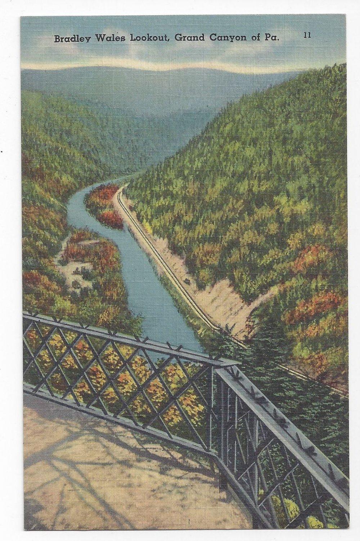 Grand Canyon of PA Bradley Wales Lookout Vintage Tichnor Linen Postcard
