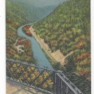 Grand Canyon of PA Bradley Wales Lookout Vintage Tichnor Linen Postcard