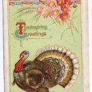 Thanksgiving Turkey Vintage Embossed P Sander 1911 Postcard