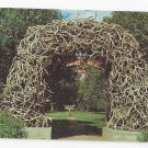 WY Jackson Hole Arch of Elkhorns Grand Teton Natl Park Vintage Postcard