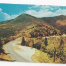 NC Mount Mitchell Intersection Blue Ridge Parkway Vintage Postcard