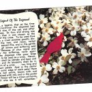 Legend of the Dogwood Tree Crucifixion Vintage Postcard
