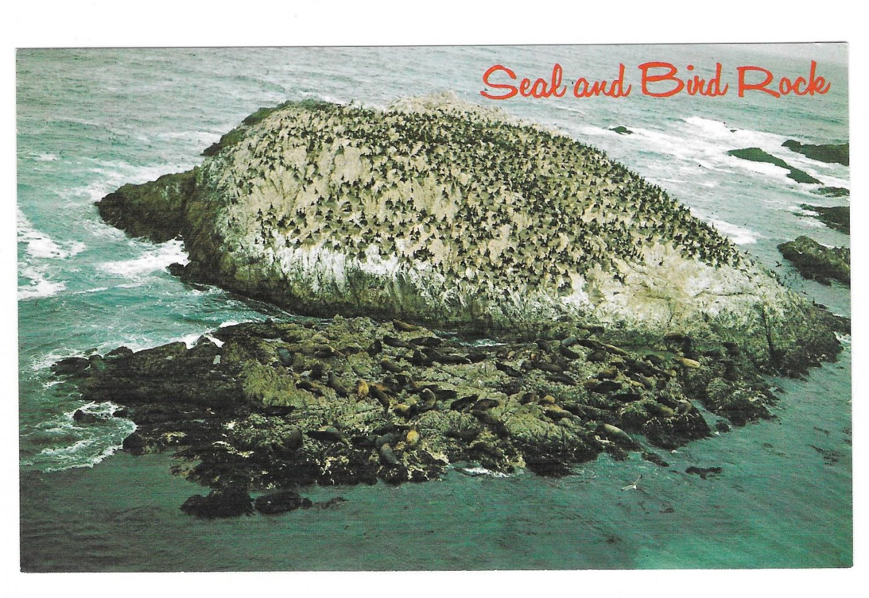 CA Seal and Bird Rock Monterey 17 Mile Drive Vintage Postcard