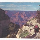 AZ Grand Canyon Mule Train Returns Vintage Fred Harvey Postcard