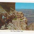 AZ Grand Canyon National Park Kaibab Trail Vintage Fred Harvey Postcard