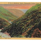 WV Monongahela National Forest Blackwater Canyon Vtg Linen Postcard
