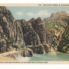 WY Yellowstone Park Shoshone Canyon Cody Road Eastern Entrance Vtg Postcard