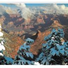 Grand Canyon National Park First Snow Fred Harvey Postcard 4X6 AZ