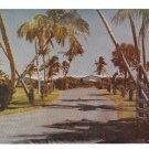 FL Fort Lauderdale Sea Ranch Hotel Entrance Vtg Postcard