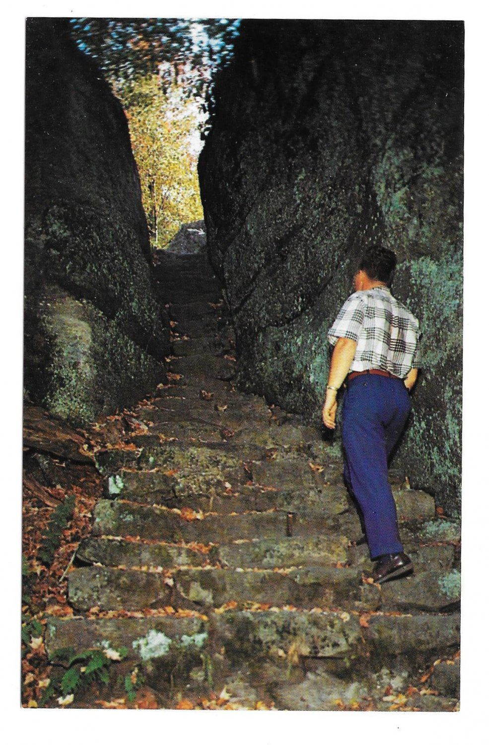 Olean NY Rock City Park Indian Stairs Vtg 195 Postcard Route 16A
