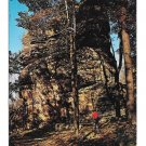 Olean NY Rock City Park Sentinel Rock Vtg 1960 Postcard Route 16A