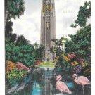 Bok Tower Florida Lake Wales Pink Flamingos Vtg Postcard