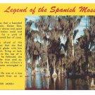 Legend of Spanish Moss Cypress Trees Vintage Postcard
