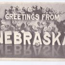 Greetings from Nebraska 1985 Vintage Large Letter Postcard