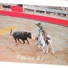 Mexico Bullfight Tijiuana Bullring Matador CA Baja Vintage Postcard