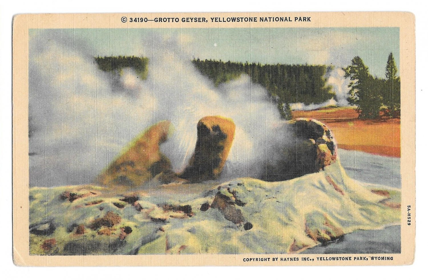 WY Yellowstone National Park Grotto Geyser Vintage Haynes Postcard