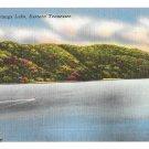 TN Watauga Lake Eastern Tennessee Vntg Linen Postcard