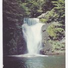 PA Buck Hill Pocono Mountains Lower Falls Vintage Postcard Waterfall
