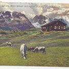 Austria Hoferhutte Monte Spinale Madonna di Campiglio Vintage Postcard