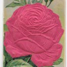 Heartiest Congratulations Large Silk Covered Red Rose Embossed Novelty Postcard