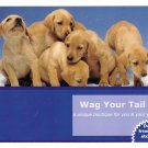 Modern Advertising Postcard Puppy Wag Your Tail Pet Boutique Dogs