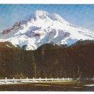 Oregon Mt Hood from the Loop Highway Vintage Postcard Mike Roberts