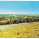Eastern Oregon Blue Mountains Hwy 30 Deadman Pass View Vintage Postcard