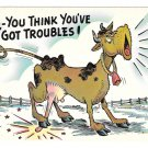 Cow So You Think You've Got Troubles Vintage Comic Humor Postcard