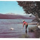 Odell Lake Oregon Trout Fishing Vintage Postcard Walt Dyke Photo