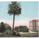 Italy Napoli Palazzo Reale di Capodimonte Garden E Ragozino Vintage UND Postcard