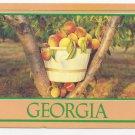 Georgia Peaches 1993 Steve Yost Postcard 4X6 A peachey place to be