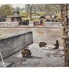 Switzerland Bern Barengraben Fosse aux Ours Bear Pit Park A Gwinner Postcard