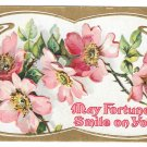 Vintage Greetings Postcard May Fortune Smile on You Embossed Wild Roses Gilt