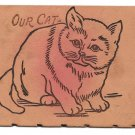 Our Cat Vintage Leather Postcard UDB Undivided Back Unused