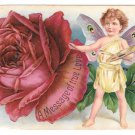 Fantasy Butterfly Child Red Rose Artists Palette Message True Love 1908 Postcard