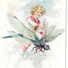 Boy Riding Dragonfly Vintage Tuck Embossed Birthday Postcard Fantasy Child