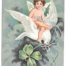 Valentine Postcard Shamrock Cupid Angel Riding on Dove Four Leaf Clover IAP