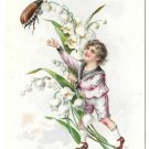 Tuck Birthday Postcard Boy Sailor Suit Insect Japanese Beetle Lily of the Valley