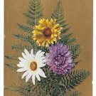 Motto Love Poem Flowers Daisy Ferns Gold Background Vintage Postcard