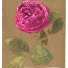 Motto Postcard Love Flowers on Gold 1909 Red Roses Gathered at Thy Che