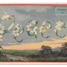 Language of Flowers Lily Peace Vintage Postcard