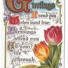 Greetings Friendship Motto Postcard Illuminated Letters Tulips Embossed Scrolls