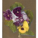Motto Postcard Flowers on Gold Background Pansies Letter you promised