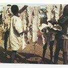 Africa Drying Snake Skins IRIS Afrique en Couleurs Vtg Postcard 4X6