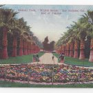 CA Los Angeles Lincoln Park Winter Scene Flower Bed Pansies Vintage Postcard Van Ornum