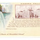 NY Niagara Falls Home of Shredded Wheat Plant Advertising Postcard ca 1925