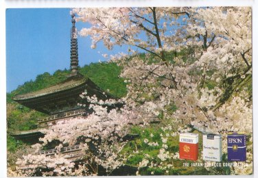 Japan Tobacco Corp 1970s Advertisement Cherry Cigarettes Kyoto 4X6 Postcard