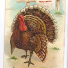 Thanksgiving Proclamation Turkey Embossed Gold Gilded Lettering Vintage Postcard